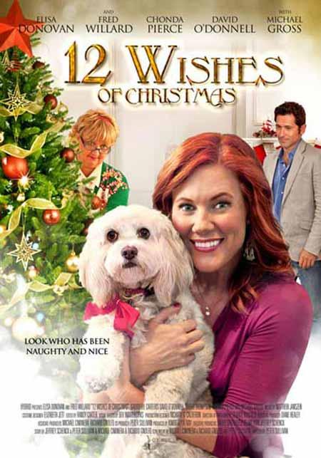 12 Wishes of Christmas / 12 Коледни желания (2011)