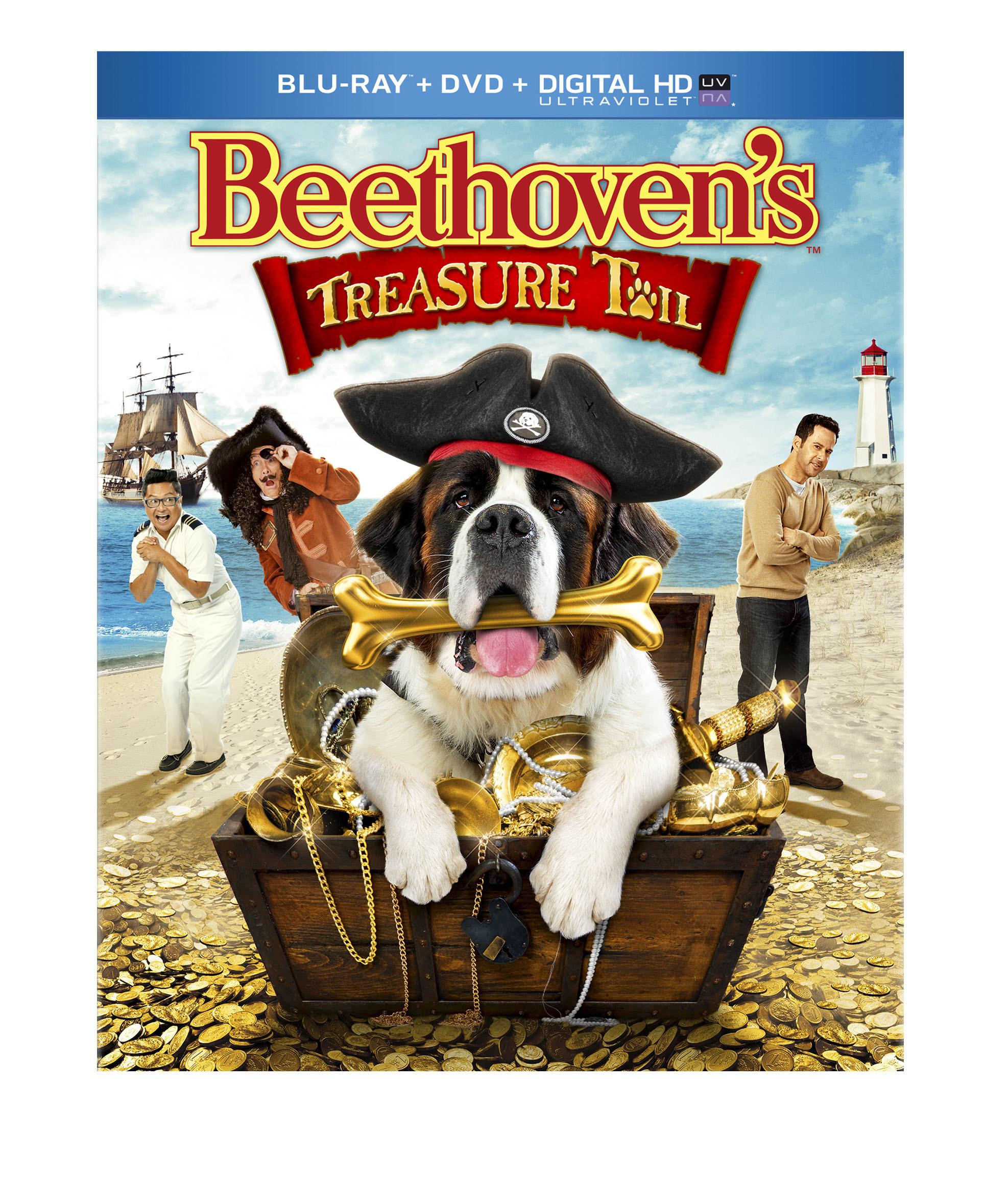 Beethoven's Treasure / Съкровището на Бетовен (2014)